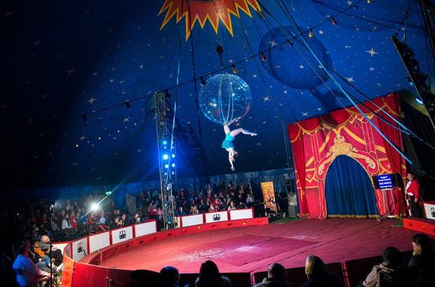 Circus Starr CIC