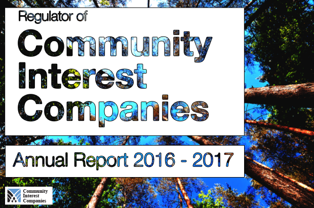 CIC annual report image