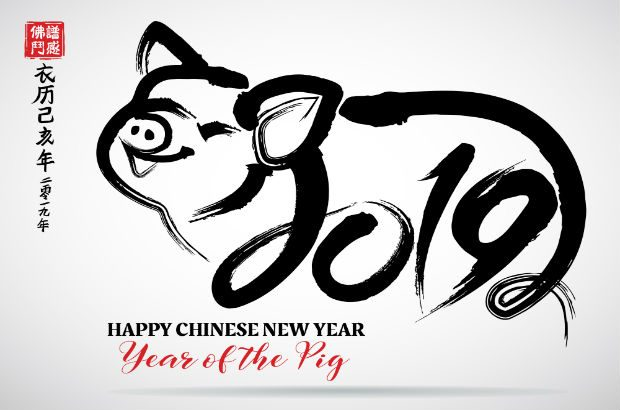 Chinese new year of the pig