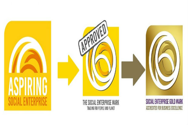 stages of the social enterprise mark award from aspiring to gold level