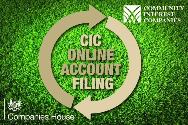 CIC accounts online filing picture